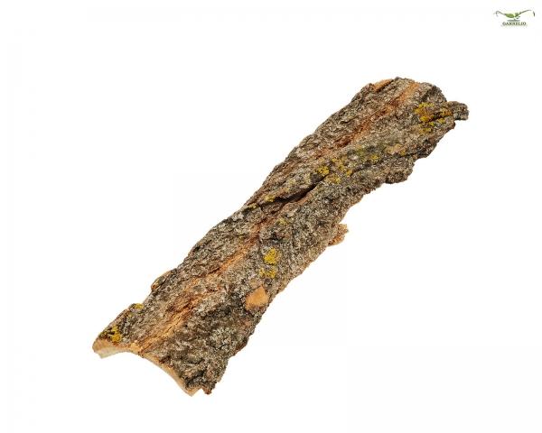Pappel Rinde Natur 15-35cm