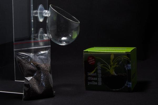 Plant Pot - Pflanzenschale mit Saugnapf