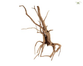 Nano Spiderwood - Aquarium / Terrarium Wurzel