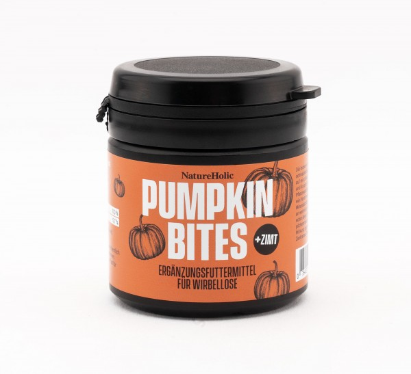 NatureHolic - Pumpkin Cinnamon Bites - 30g