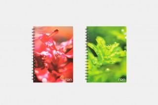 ADA - Ring Notebook