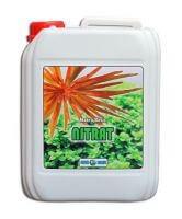 Makro Basic Nitrat - 5000 ml