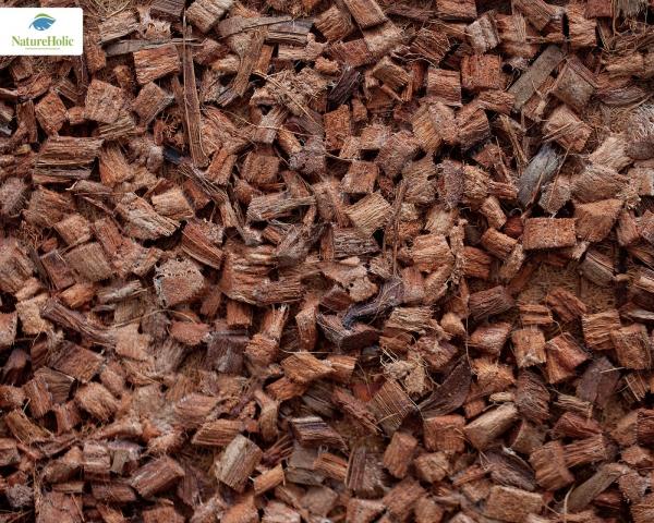 "Natureholic Kokosfaser Matte ""Husk"" 40 x 40 cm, 1 cm dick / Terrariumrückwand"