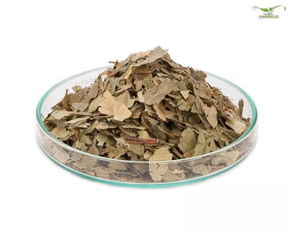 Garnelio - Birken Blätter - 10 g