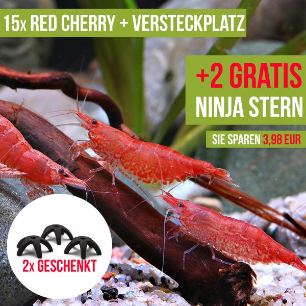 15 St. Red Cherry Garnelen + 2x Ninja Stern Shelter