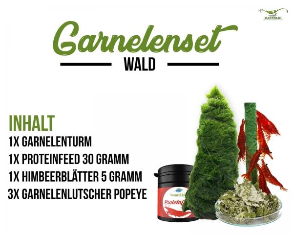 Garnelen Set Wald - Garnelen Turm mit Futter und Snack