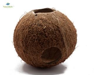 Natureholic Kokoshöhle - Komplett (3 Löcher) - für Krabbenterrarium