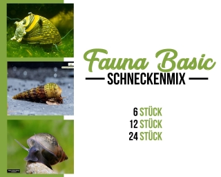 Schnecken mix - Fauna Basic