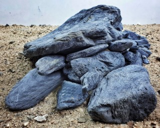 Wild Rhino Stone - vers. Größen