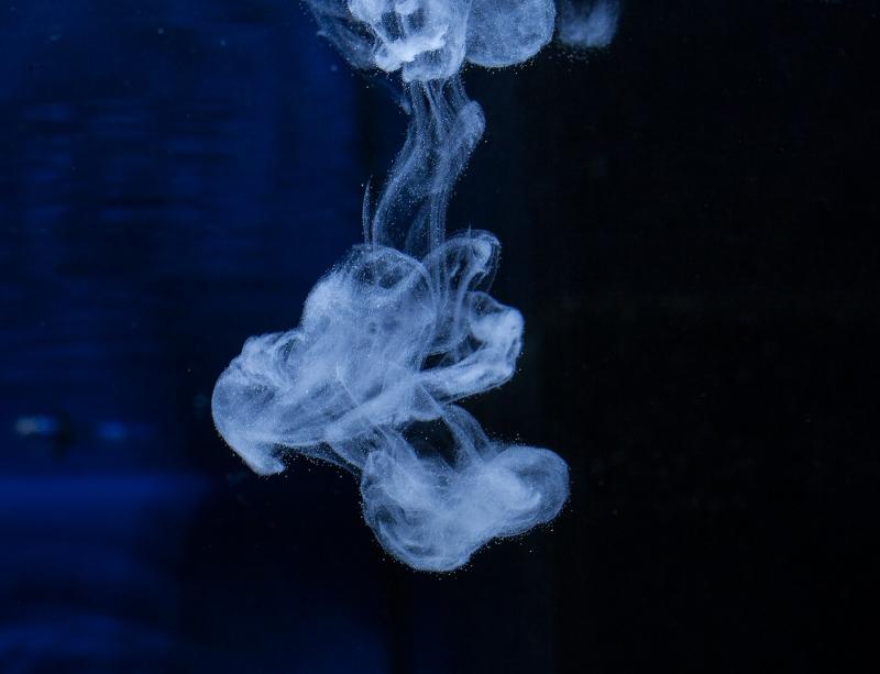 media/image/toxex-liquid-einsatz59df83d5a21475a16fc5f54f56.jpg