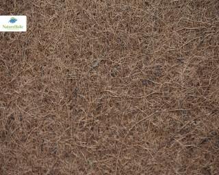 Natureholic Kokosfaser Matte 30 x 30, 1 cm dick - natur / Terrariumrückwand