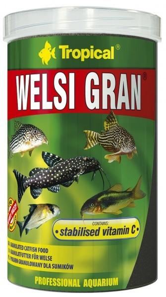 Welsi Gran 1L