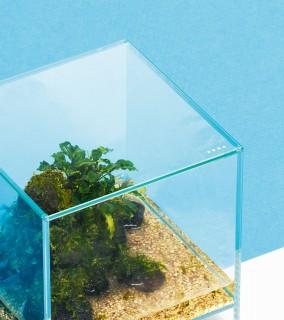 DOOA - Neo Glass Cover