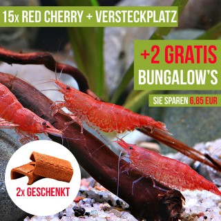 15 St. Red Cherry Garnelen + 2x Nano Bungalow