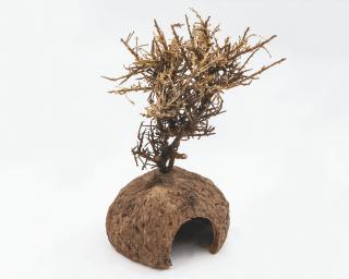Nutwood Tree - mit Seiteneingang