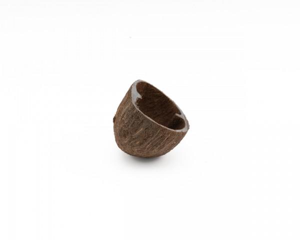 Palm Pods Natur - 5-7cm