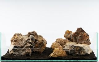 Versteinertes Holz Bunt - 13-teiliges Set