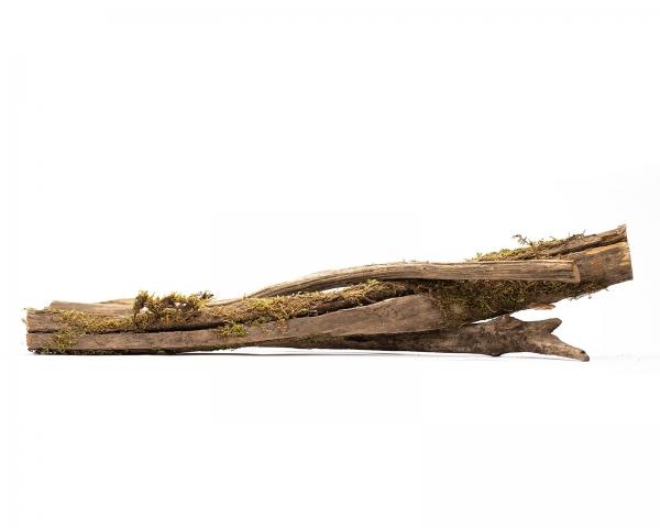 SkinnyWood für Terrarien - 3 Stk.
