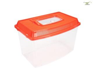Wirbellosen Transportbox - 5,5 L
