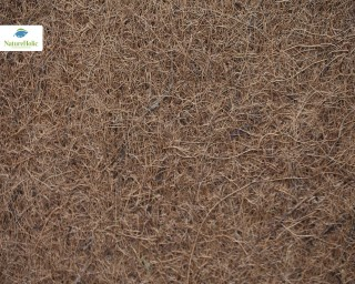 Natureholic Kokosfaser Matte 120 x 60 cm, 1 cm dick / Terrariumrückwand