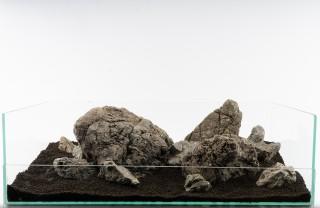 Frodo Stone - vers. Größen