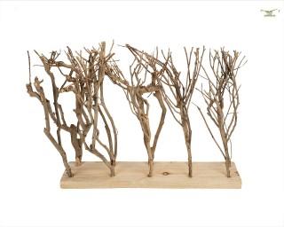 Terrarium Forest zum eingraben - 50x39 cm