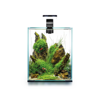 Nano Aquarium - SHRIMP SET DAY&NIGHT 30L - schwarz