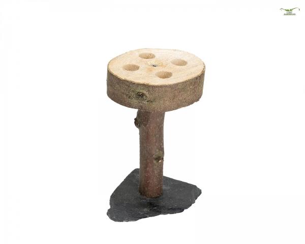Nature Safeplace auf Schiefer - Pilz
