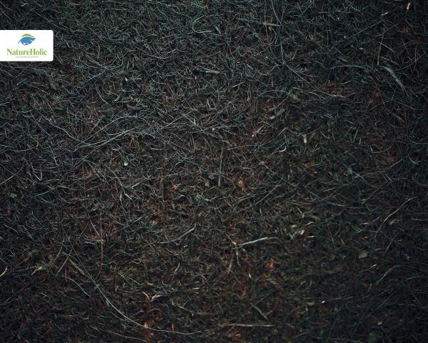 Natureholic Kokosfaser Matte 50 x 50, 1 cm dick - dunkelbraun / Terrariumrückwand