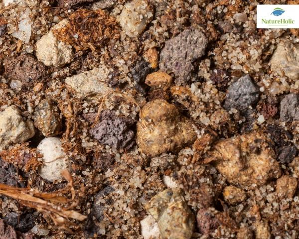 NatureHolic - AktivdepoMix+ 1kg - Nährboden für Nano & Garnelenaquarien