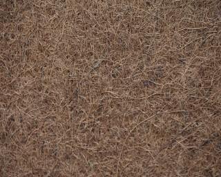 Natureholic Kokosfaser Matte 100 x 50 cm, 1 cm dick / Terrariumrückwand