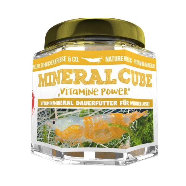 Mineral 6 Vitamin Cube