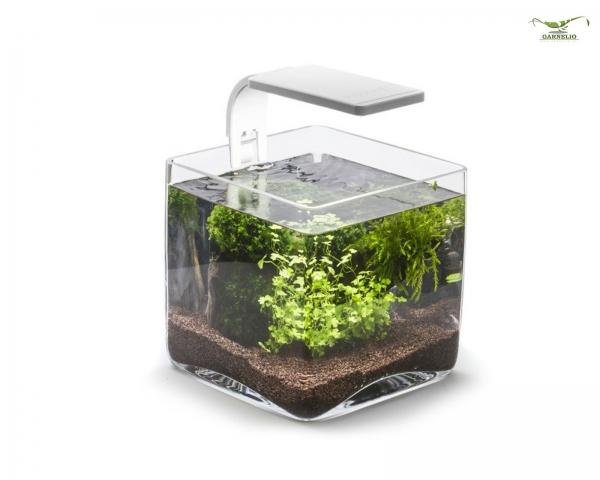 Aquael nano Glas Aquarium - Würfel 6,5 l