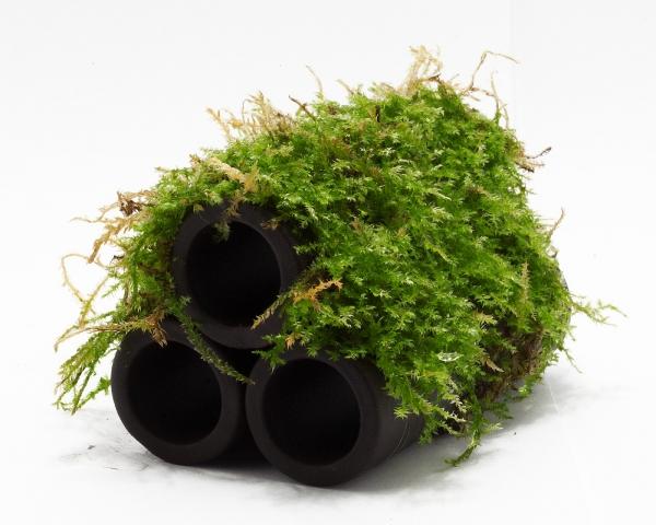 Crusta Tubes - 3er Röhre klein - Javamoos - Dennerle