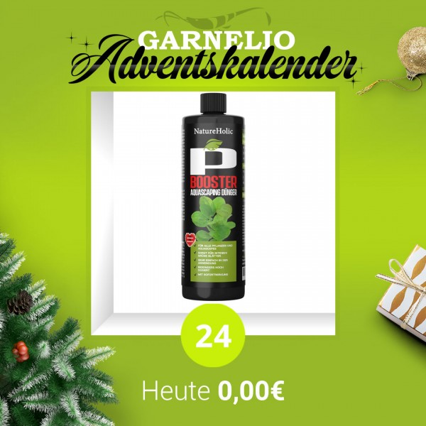 Türchen 24 - NatureHolic P Dünger - 250ml