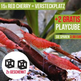 15 St. Red Cherry Garnelen + 1x Nano Iglu