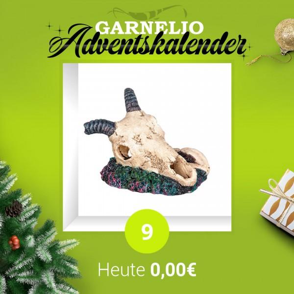 Türchen 9 - Ziegenkopf - Deko