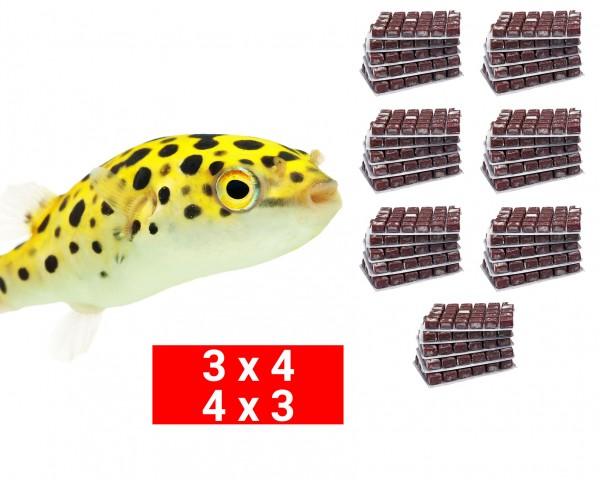 Frostfutter Bundle für Kugelfische - 24 Stk.
