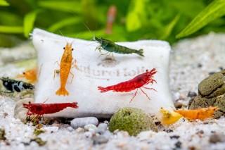 Natureholic - Micro Farm - Shrimp