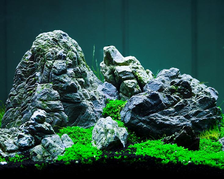 co2 d ngung im aquarium garnelen onlineshop. Black Bedroom Furniture Sets. Home Design Ideas