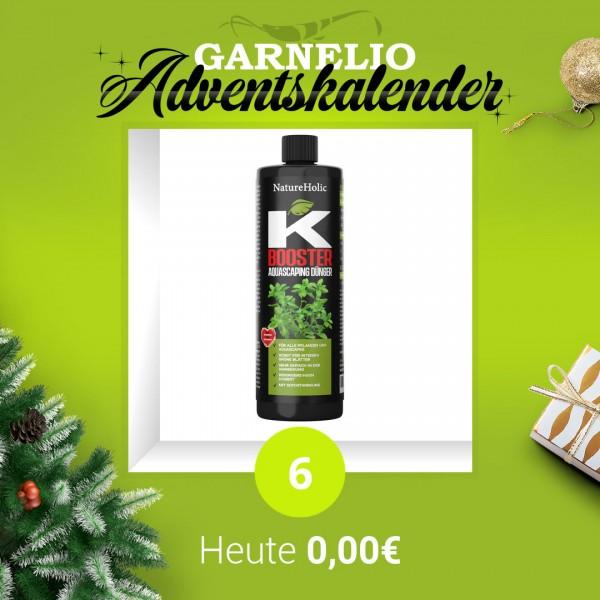 Türchen 6 - NatureHolic K Dünger - 250ml