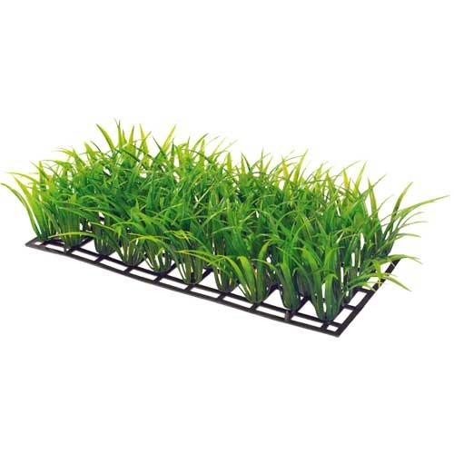 Plant Mat 3 - 25x12,5 cm - Bodendecker für Aquarienvordergrund