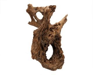 Mangrove Wurzel Jumbo & Medium