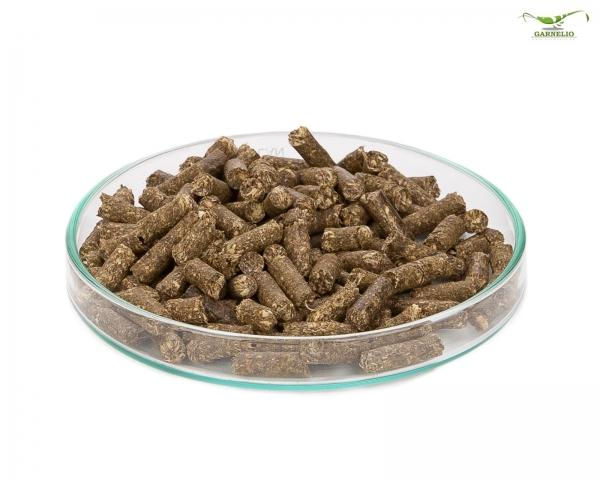 Garnelio - Echinacea Sticks - 25 g
