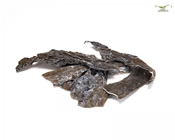 AlgaePlate - Naturbeschnitt - Aufwuchsfresser & Wochenendfutter für Wirbellose ( Algenplatten ) - 10 g