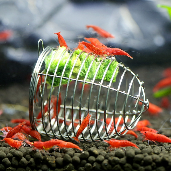 Foodcage für Garnelen