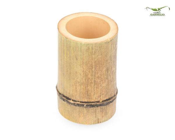 Bambus Vase natur Deko / Topf / Versteckplatz für Terrarien