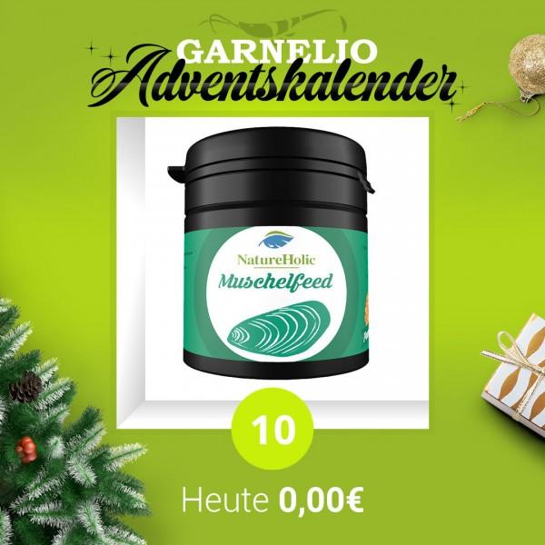 Türchen 10 - NatureHolic Muschelfeed - 50ml