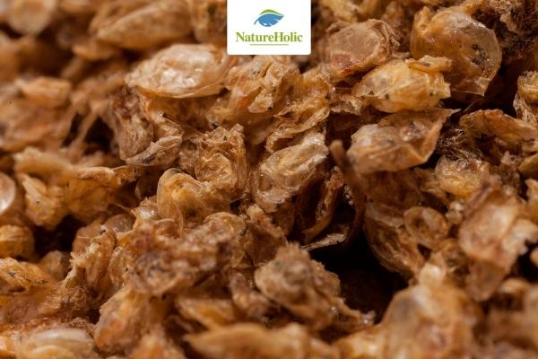 Getrocknete Wasserflöhe - 25 g - Leckerer Snack für Cambarellus & Zwerggarnelen