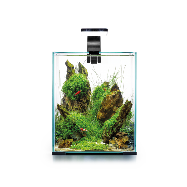 Nano Aquarium - SHRIMP SET DAY&NIGHT 20L - schwarz